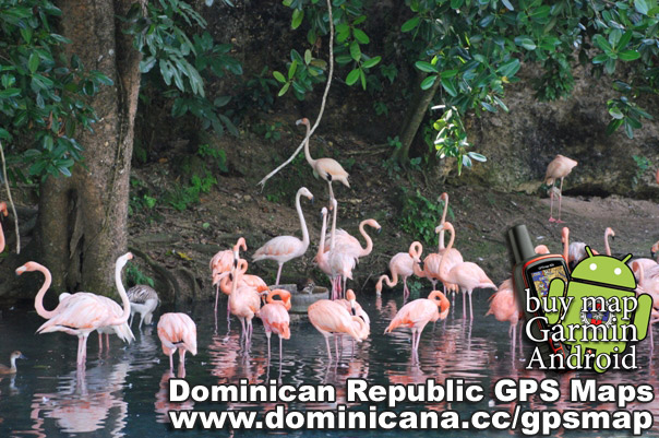 GPS Dominican Republic maps with all cities